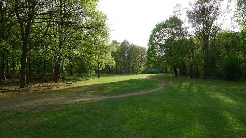 Parc Tiergarten idéal pour les jogging et les balades à vélo même tard !