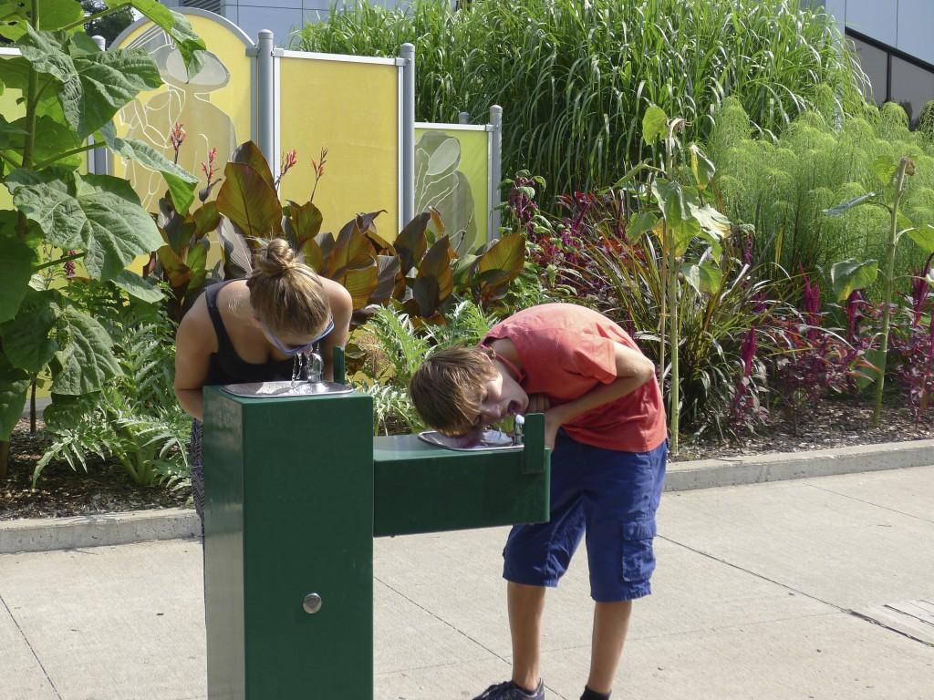 fontaine à eau jardin Botanique Montréal