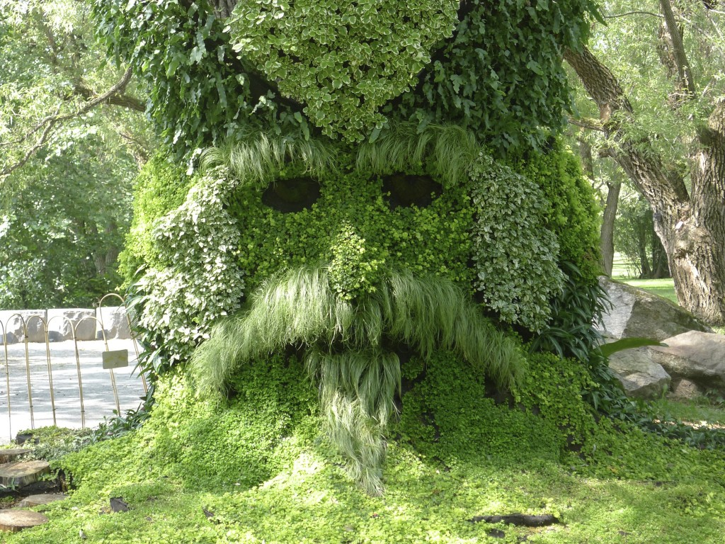 visage vert dans le jardin botanique Montréal