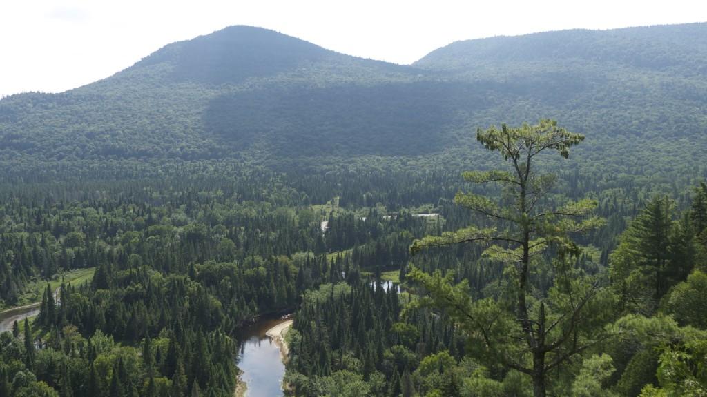 vue sur le parc du Mont Tremblant
