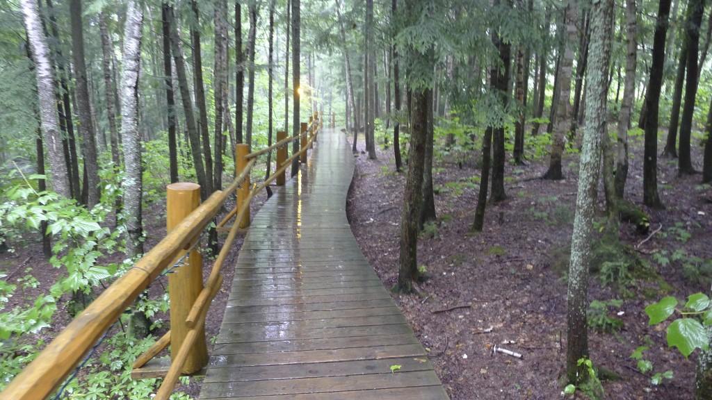 Escalier autour de Sacacomie