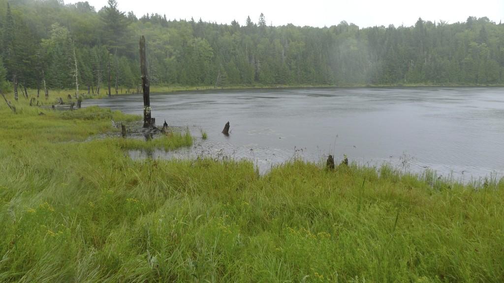Lac autour de Sacacomie