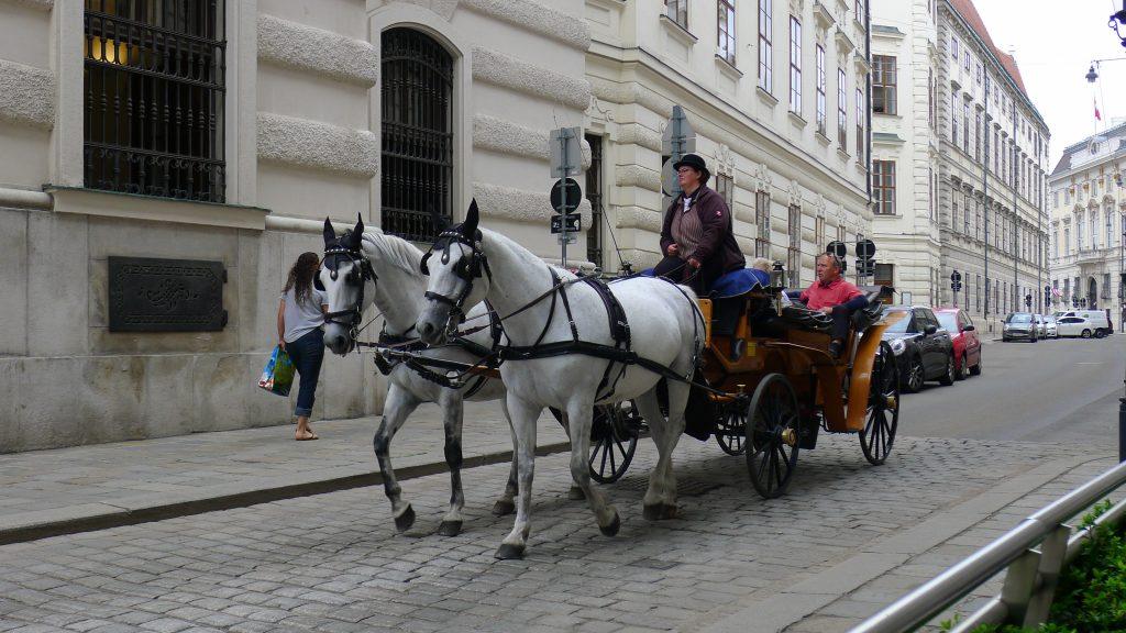 le fiacre à Vienne