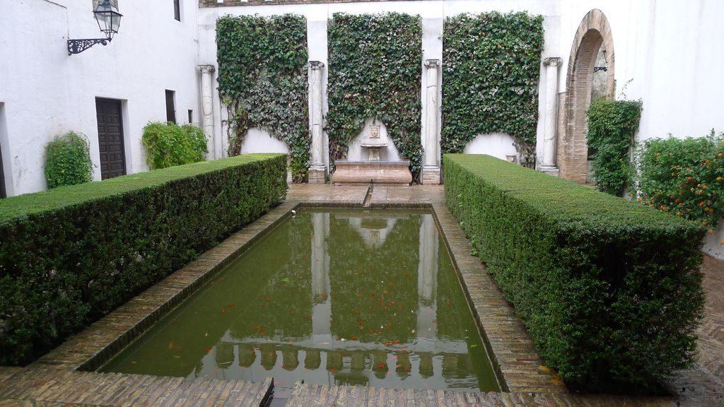bassin intérieur dans l'Alcazar