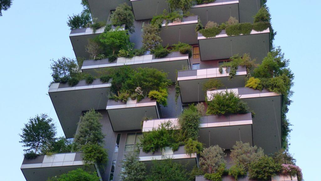 détail des jardins de l'immeuble BOSCO